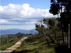 C/Salvador, terreno de 502.63vrs2